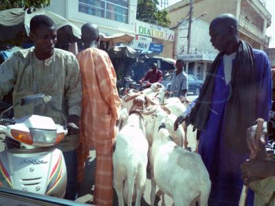 Afrika_Bamako_12