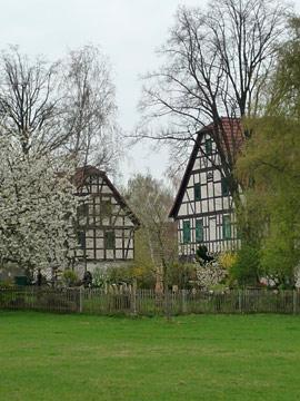 Sommer_in_Goepfersdorf